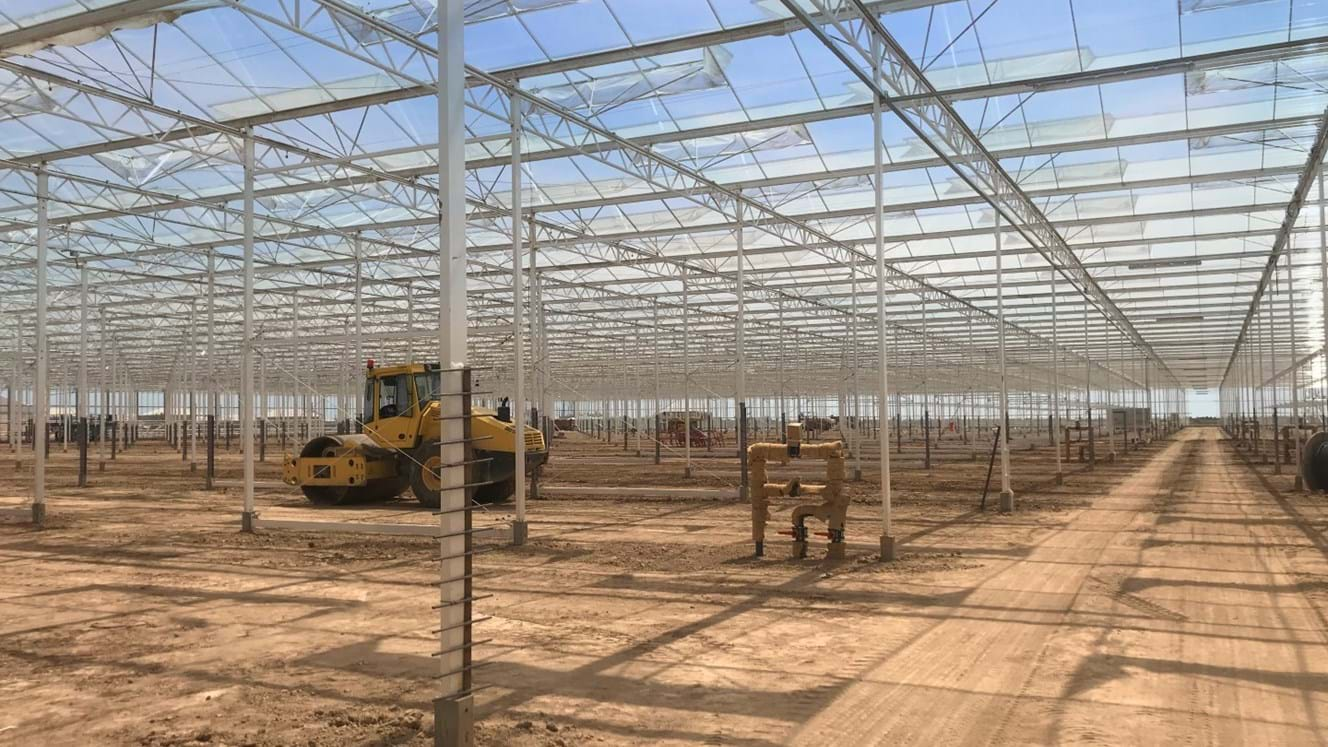 Greenhouse for growing tomatoes in Azerbaijan