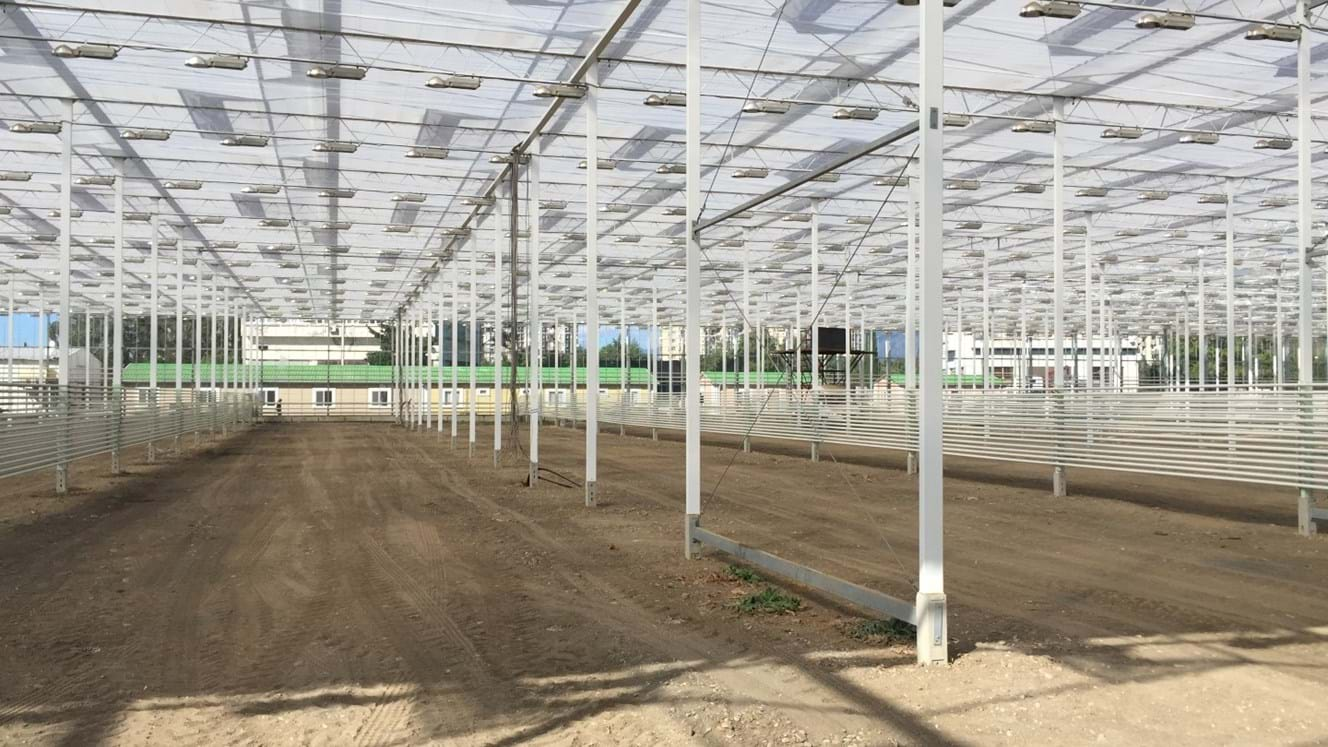 Greenhouse for growing tomatoes in Russia