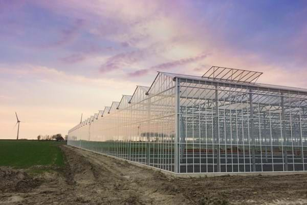 Greenhouse for growing young plants in Germany